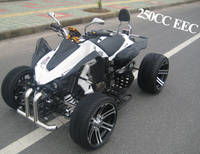 EEC 250cc Sports Racing ATV