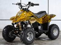 50cc-125cc Mini ATV/Quad
