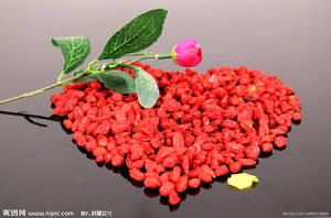 Wholesale chinese medicine: High Quality Dried Chinese Medlar Fruit (Goji Berries)-Chinese Traditional Medicine