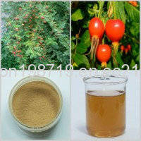 Wholesale remove radioactivity system: Rose Hip Extract