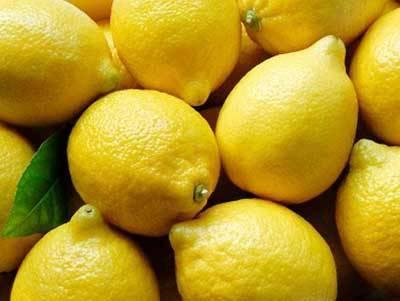 fresh lemon: Sell FRESH LEMON BEST PRICE