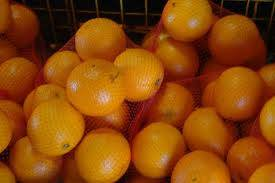 fresh fruit: Sell Fresh Citrus Fruits, Valencia Oranges & Lemons