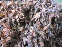 Sell seaweed extract fertilizer