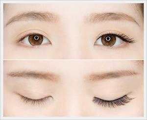 Wholesale False Eyelash: Eyelashes -Glam
