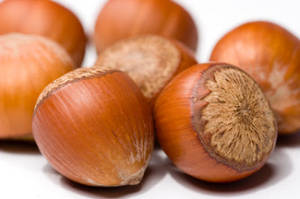 Wholesale Hazelnuts: Hazelnut Raw