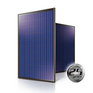 Wholesale transmission: High Efficiency 250W Poly Solar Module Black