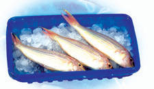 frozen seafood: Sell Food Tray, Box, Container for Frozen Seafood