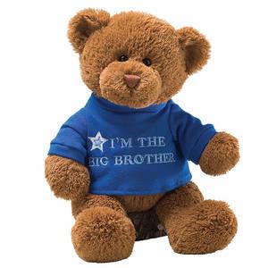 Wholesale toy: Custom Stuffed Plush Bear Toy for Kids