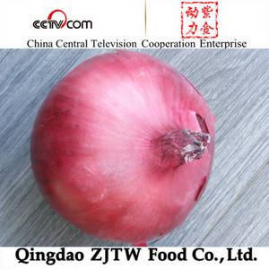 Wholesale fresh onion: Lowest Price for Fresh Red Onion