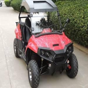 Wholesale Go Karts: Chinese 2WD 200cc Dune Buggy