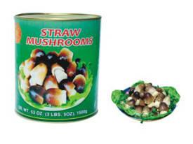 Wholesale Canned Vegetables: Canned Mushroom