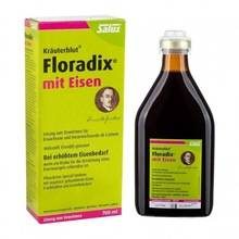 Wholesale iron: FLORADIX Formula Liquid Herbal Iron Extract 250ml (ALSO Available in 500ml)