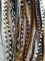 Grizzly Rooster Feathers