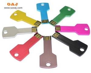 Wholesale plastic and clam and shell: Key USB Flash Drive