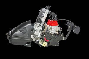 Wholesale Go Karts: Rotax 125 Micro Max Evo Kart Engine