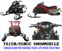 Sell 150cc 250cc snowmobile snow scooter ,snow car