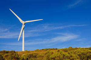 Wholesale Solar Energy Products: Wind Power and Solar System