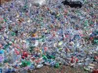 Wholesale plastic flake: Recycling PET FLAKES / PET BOTTLE SCRAP BALED / Plastic Scrap PET / COLD WASHED PET FLAKES