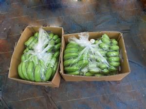 Wholesale j: Banana