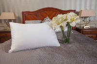 Goose Down & Feather Pillow