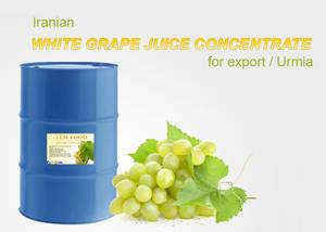 Wholesale grape juice concentrate: White Grape Juice Concentrate