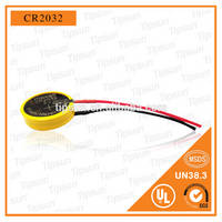 6V CR2032 Lithium Battery 220mAh Battery Pack with Wire / Cable