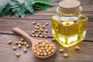 Wholesale Cooking Oil: Soybean Oil