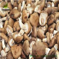 Wholesale shiitake from china: Fresh Shiitake From Northeast of China