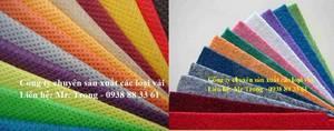Wholesale shoes: Non - Woven Fabric, Felt Fabric, Fleece Manufacturer Shoes, Speaker, Bag
