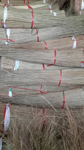Wholesale hand made: Coco Broom Sticks/ Coco Leaf Stick From Vietnam