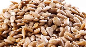 Wholesale snack: Organic Domestic Sunflower Seeds