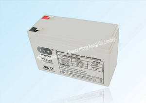 Wholesale security system: VRLA Battery