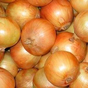 Wholesale fresh onion: Fresh Yellow Onion