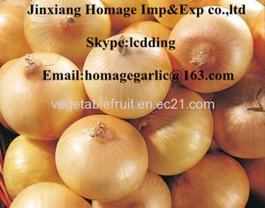 Wholesale fresh onion: Yellow Onion,Fresh Onion