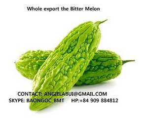 Wholesale melon: Bitter Melon