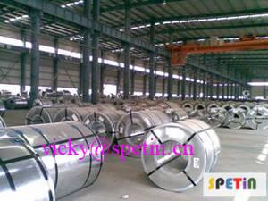 Wholesale s250: GI Steel Coils