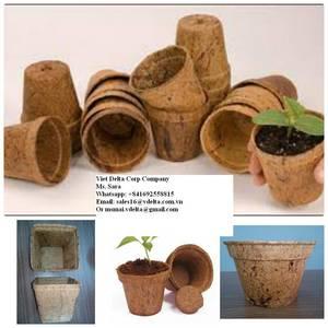 Wholesale coconut fiber: Coconut Fiber Pot