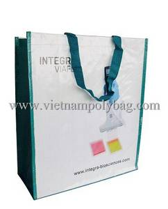 Wholesale silk: PP Woven Fabric Bag Cheap Price Promotional Bag