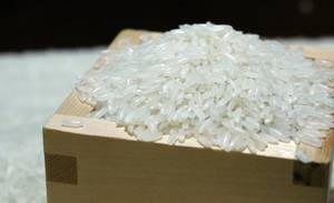 Wholesale rice: Jasmine Rice Good Quality - Email: SALES4 At Vinarice Dot Vn