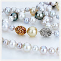 18K White Gold & Yellow Gold _ Pearl