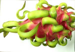 Wholesale cheap: Fresh Dragon Fruit - 2016 Best Crop - End Source Cheap Price From Vietnam