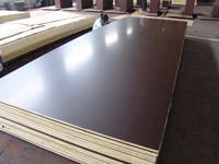 Sell FILM FACED PLYWOOD FOR ASIA MARKET