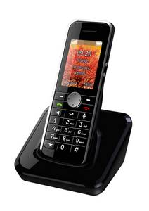 Wholesale VoIP Products: D168iw