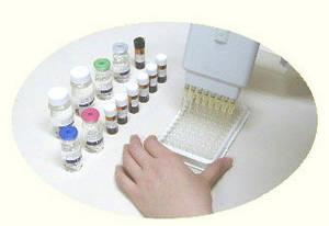 Wholesale test strips: Human Placenta PROTEIN13, PP13 Elisa Kit