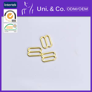 Wholesale garment accessories: Hot Sale Garment Accessories Alloyed Bra Adjuster