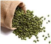 Wholesale green coffee bean extract: Natural Green Coffee Bean Extract Bulk Pure Chlorogenic Acid with UV/HPLC