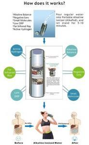 Wholesale drink: Alkaline Flask