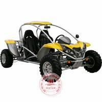 250CC EEC/EPA Hot Design Go-Kart, Go Cart WZGC2507
