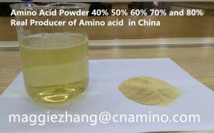 Wholesale organic foliar fertilizer: Amino Acid Powder 52% for Organic Fertilizer