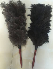Wholesale Dusters: Ostrich Feather Duster